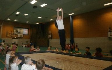 Trampolining, Problem Solving and Climbing