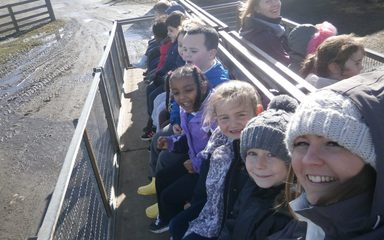 KS1 Trip to the Farm