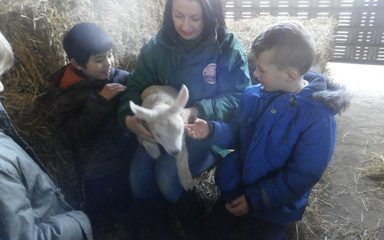 Year 2 Visit Whitehouse Farm