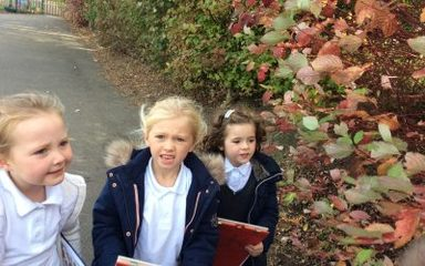 EYFS Autumn Time